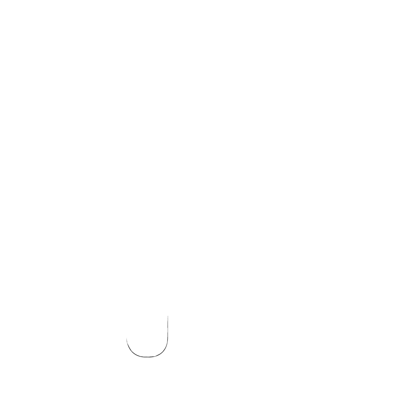 ByJosePalma